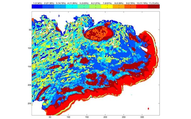 Human skin infrared analysis